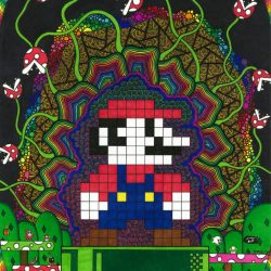 Mario Mushroom Madness